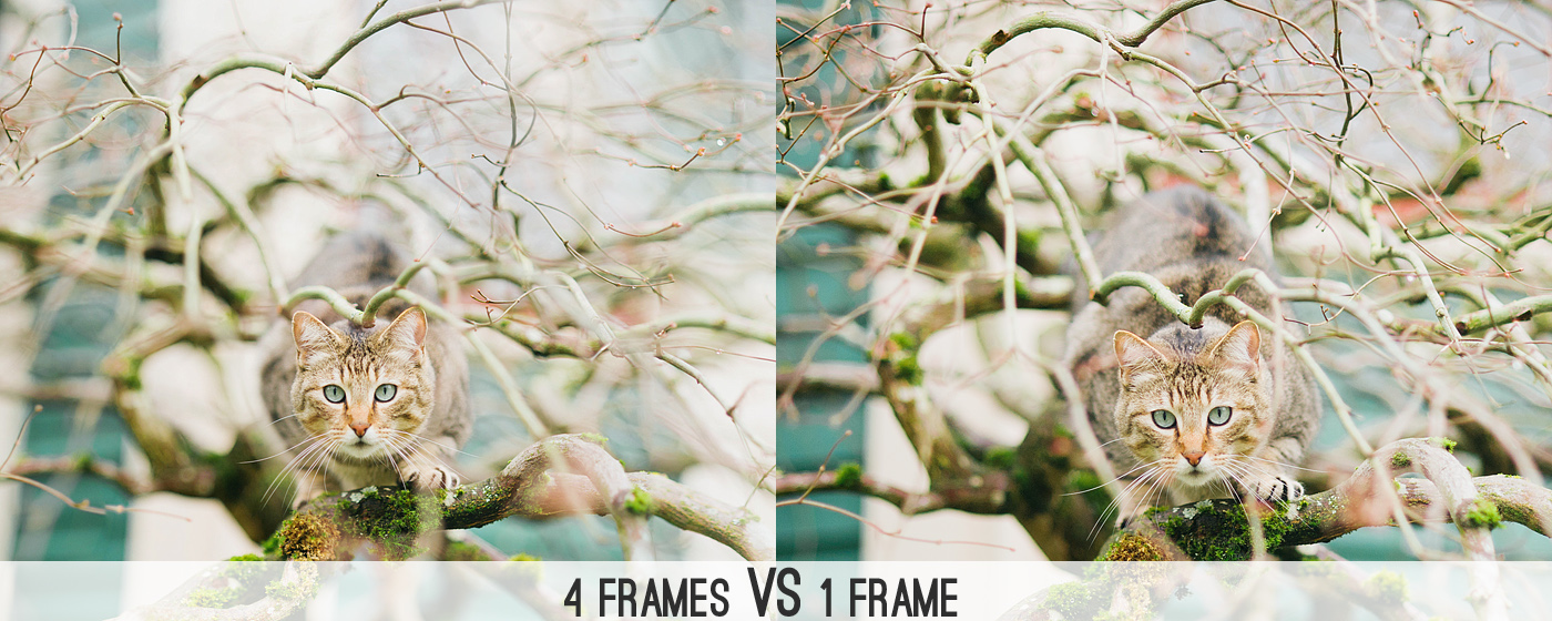 Image result for Five steps to master the techniques in photography Brenizer