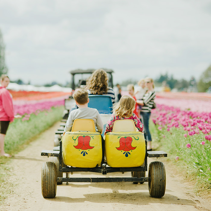 Children Riding Dutch Clog Train - Portland Lifestyle Photographer - Wooden Shoe Tulip Farm - Woodburn, OR