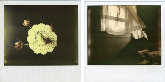Polaroid Spectra - Impossible Project - Vase, Tulips and a Magic Window