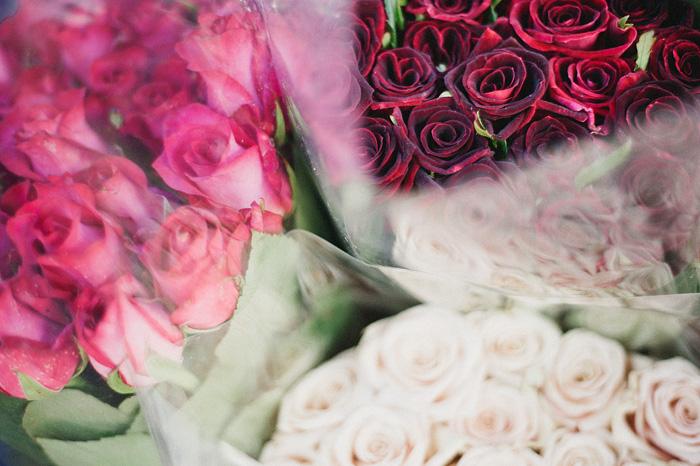 San Francisco Photographer - Roses at Farmer's Market