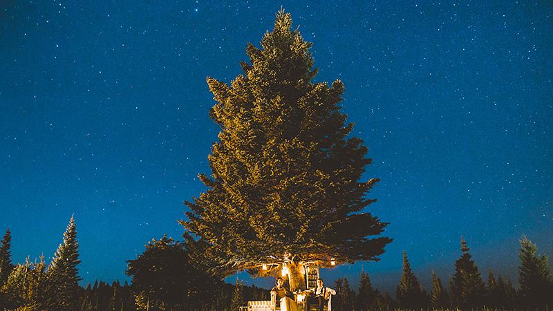 Starry Night Portrait in Mt. Hood, OR - 2014 Best of Portland Weddings