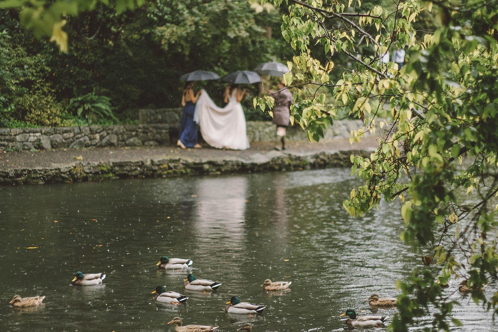 Crystal Springs Rhododendron Garden wedding ceremony