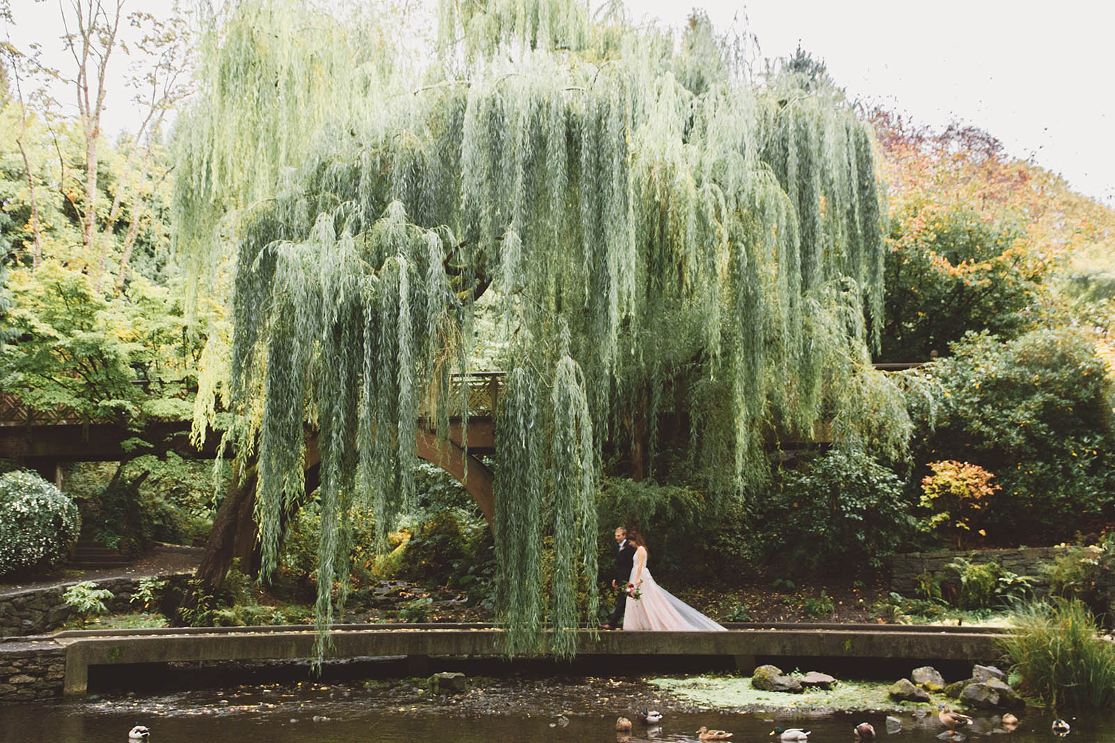 Portraits of Bride and Groom under a willow tree at Crystal Springs Rhododendron Garden