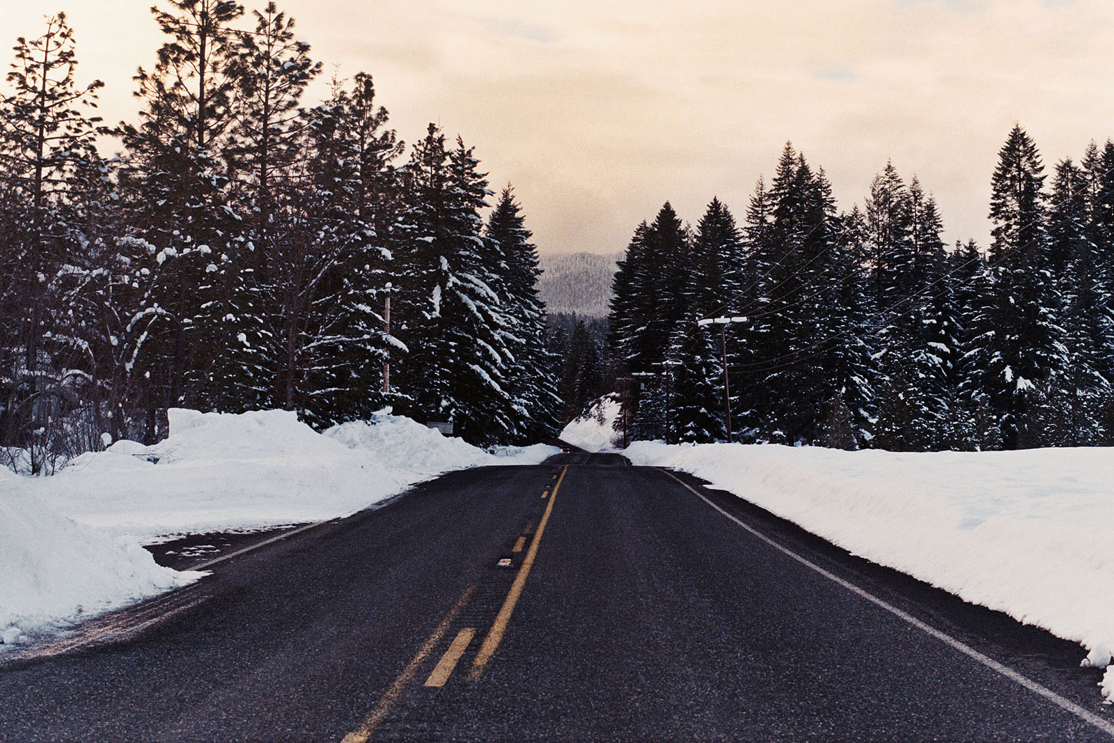 Driving to Trout Lake, WA | Contax Aria