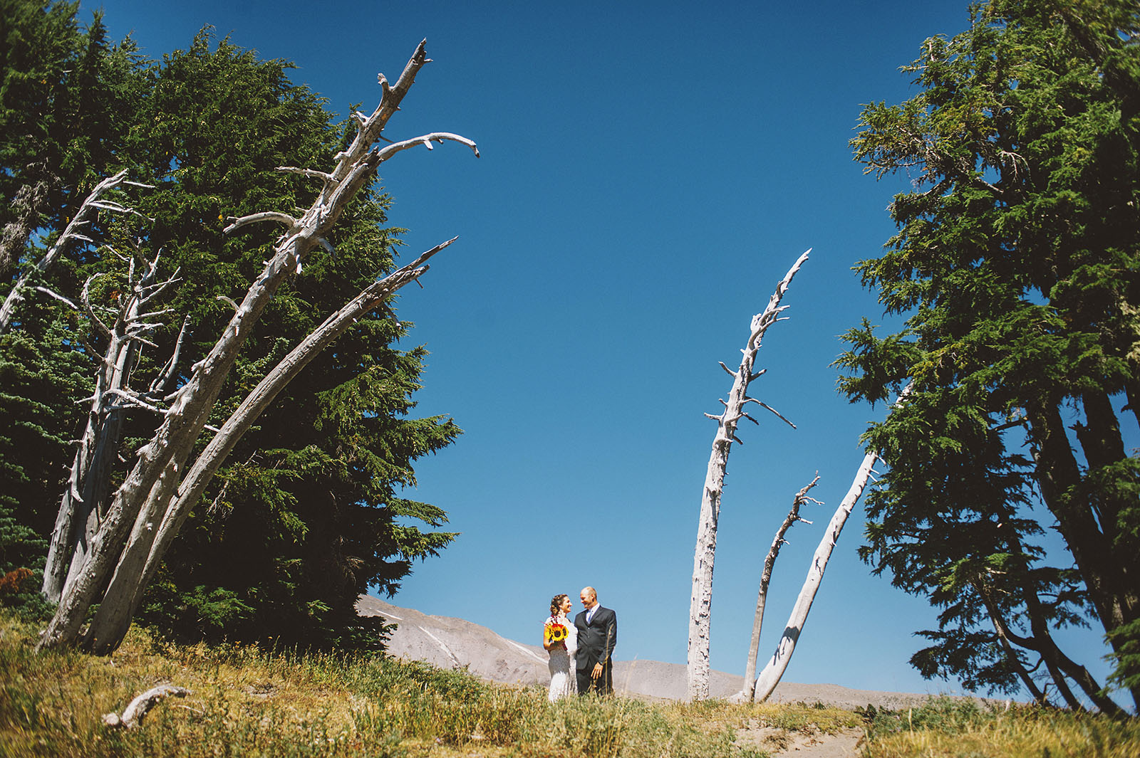 Portrait of bride and groom at the Timberline | Mazama Lodge Wedding