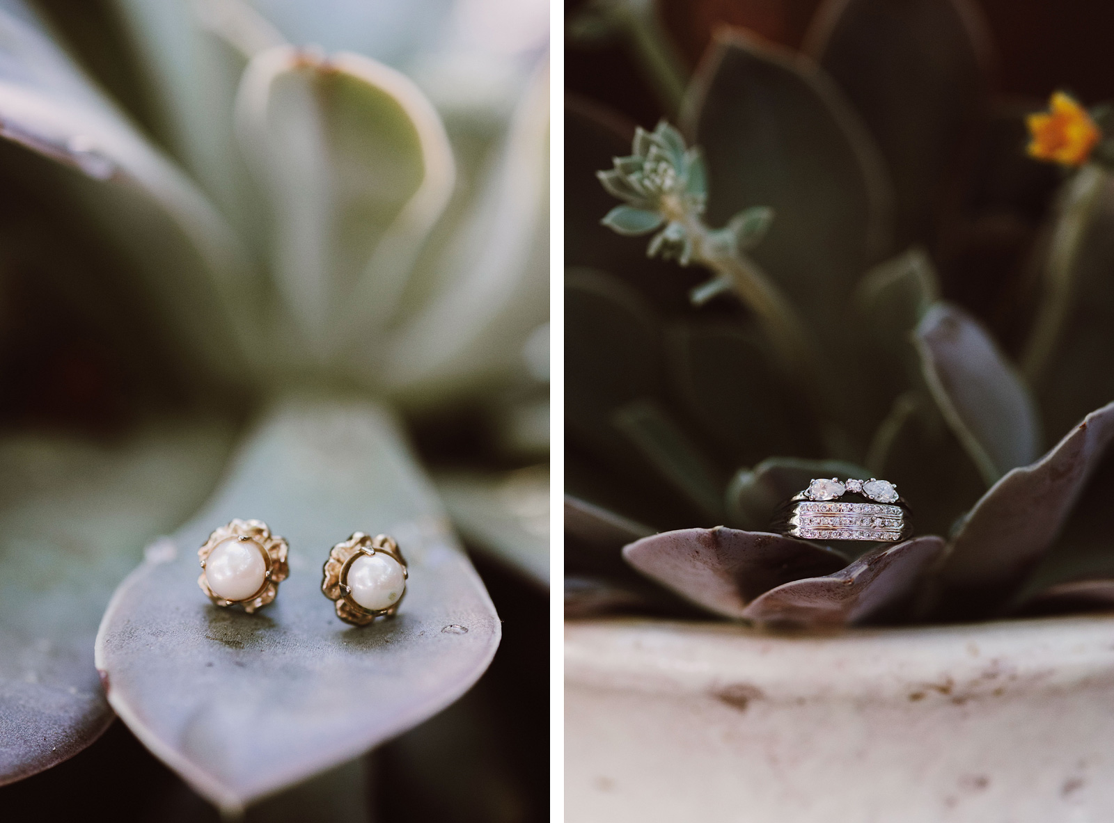 Bride's earrings and rings shot on succulent leaves | Backyard Chico California Wedding