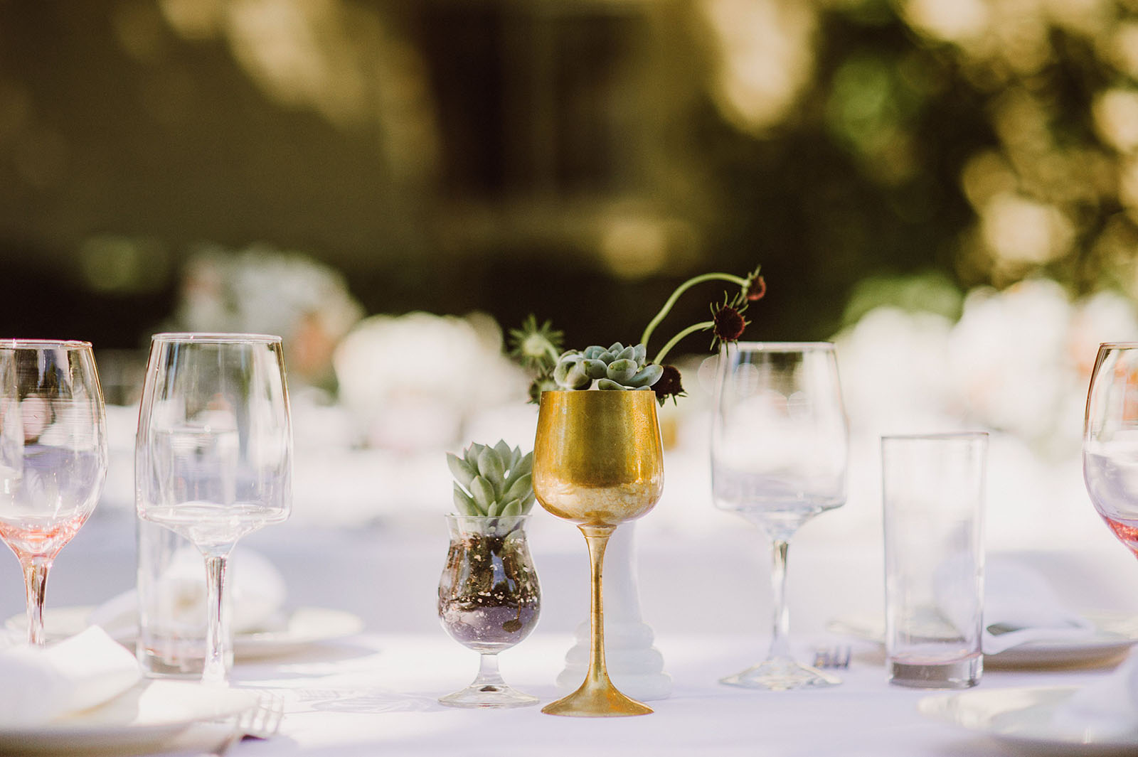 Gold goblet and succulent table settings | Backyard Chico California Wedding