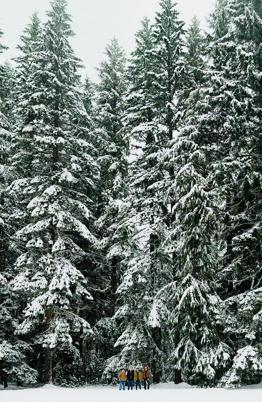 Bokeh Panorama - Brenizer Method - Mt Hood