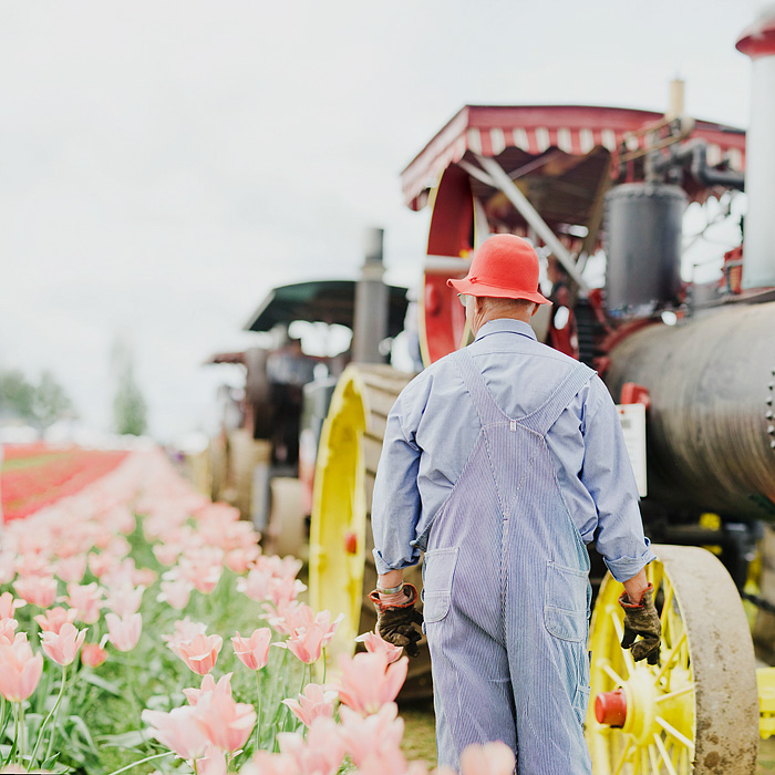 Steam Tractor Conductor - Portland Lifestyle Photographer - Wooden Shoe Tulip Farm - Woodburn, OR