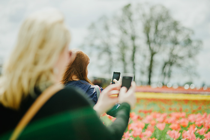 Women Instagramming the Wooden Shoe Tulip Farm - Portland Lifestyle Photographer - Woodburn, OR