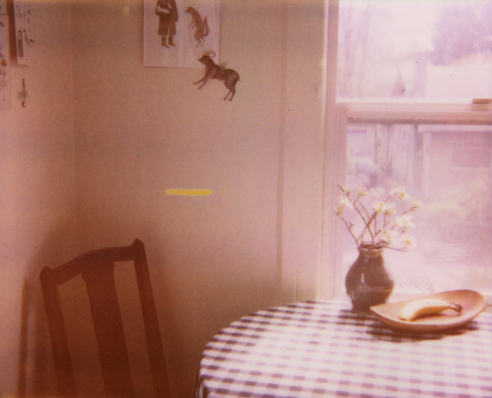 Polaroid Spectra - Expired Film - Lifestyle Kitchen