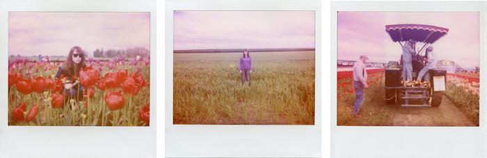 Wooden Shoe Tulip Festival - Polaroid Spectra - Expired Polaroid Film