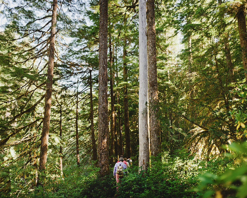 Salem Wedding Photographer - Wedding Party hiking to ceremony in Opal Creek Ancient Forest