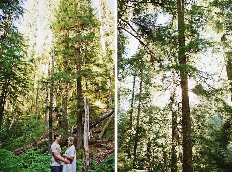 Salem Wedding Photographer - Ceremony in Opal Creek Ancient Forest