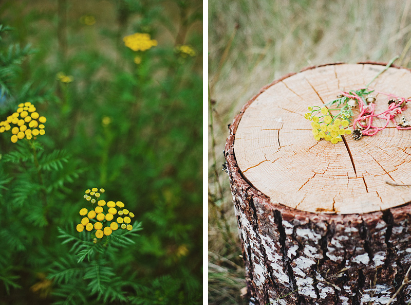 Salem Wedding Photographer - Bride's necklace and bouquet on a tree stump in Jawbone Flats - Opal Creek Ancient Forest