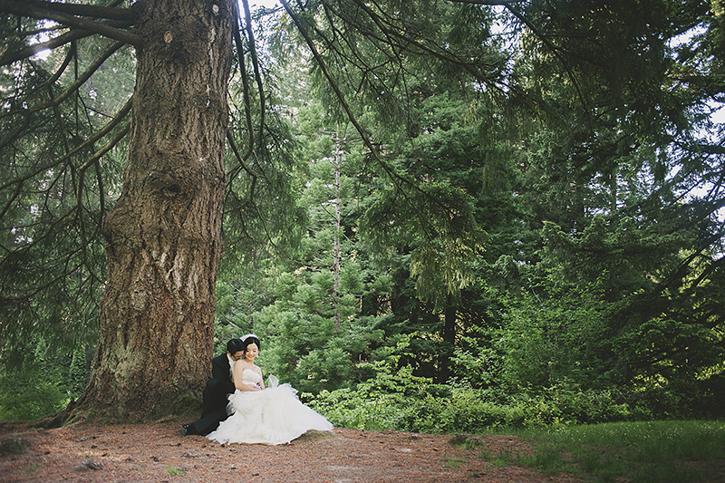 Oregon Wedding Photographer - Bride and Groom sitting under a tree in the Hoyt Arboretum wedding meadow