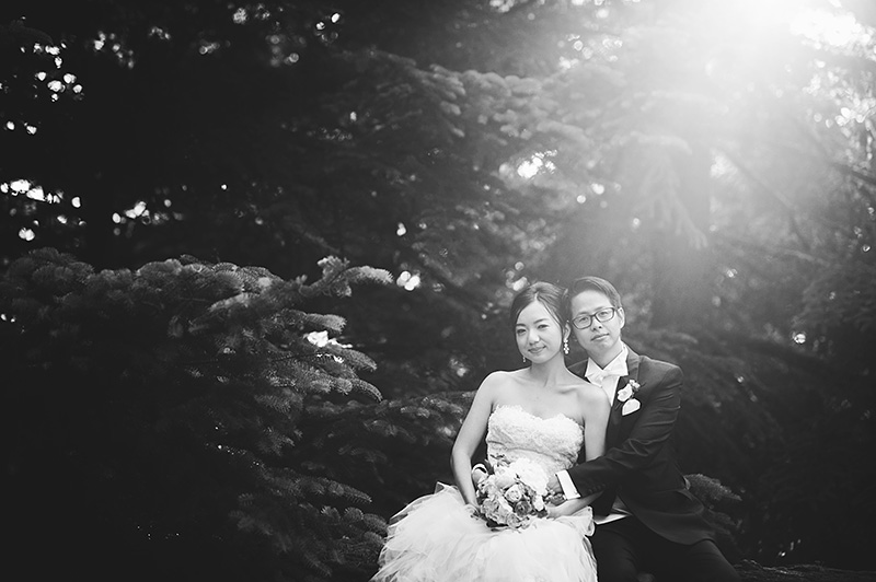 Oregon Wedding Photographer - Bride and Groom sitting on a log in Forest Park