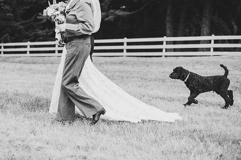 Yamhill Wedding Photographer - Dog following bride to the ceremony