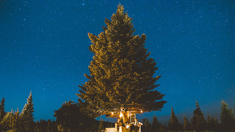 Starry Night Portrait in Mt. Hood, OR - 2014 Best of Portland Weddings