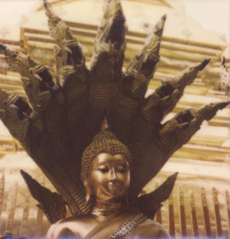 Buddha statues inside Doi Suthep | SLR680 Polaroid