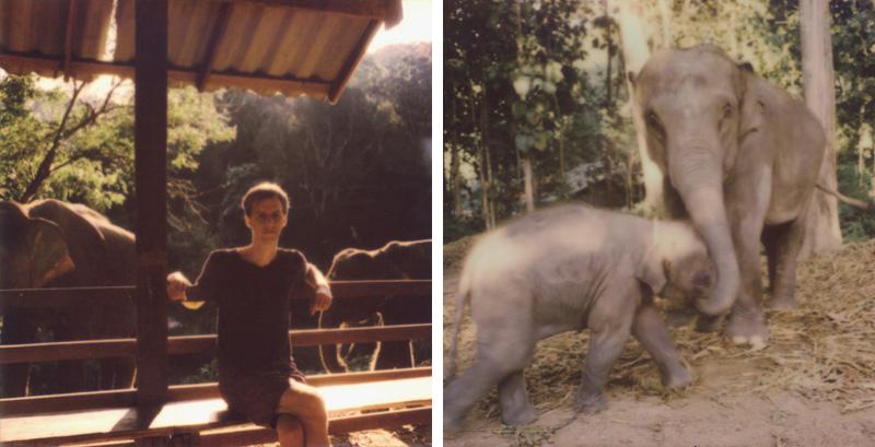 Chris visiting elephants at Chai Lai Orchid | SLR680 Polaroid