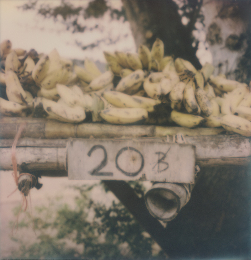 Bananas for sale in Thailand | SLR680 Polaroid