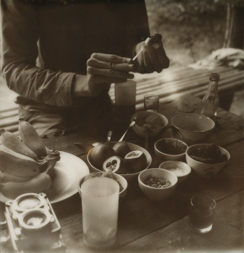 Eating food at the Farmer's Land Crack in Pai, Thailand | SLR680 Polaroid