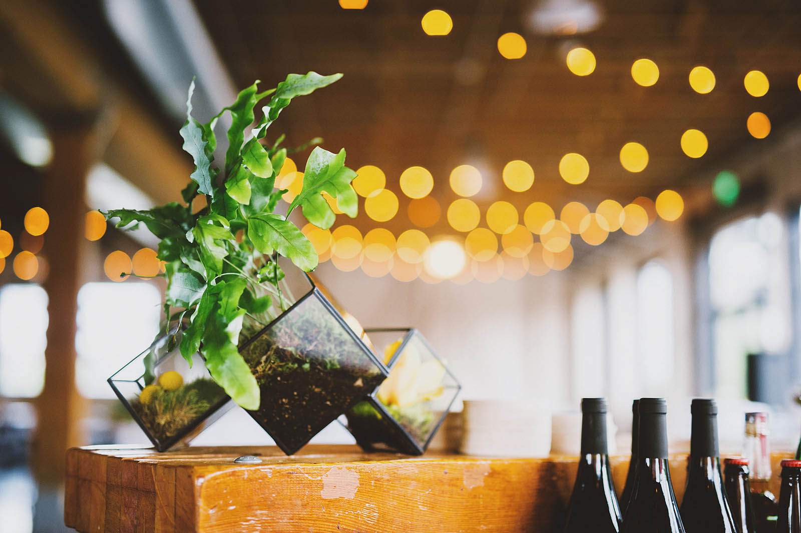 Geometric planters at the bar | Castaway Portland Wedding