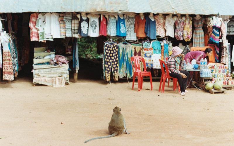 10 Days in Cambodia
