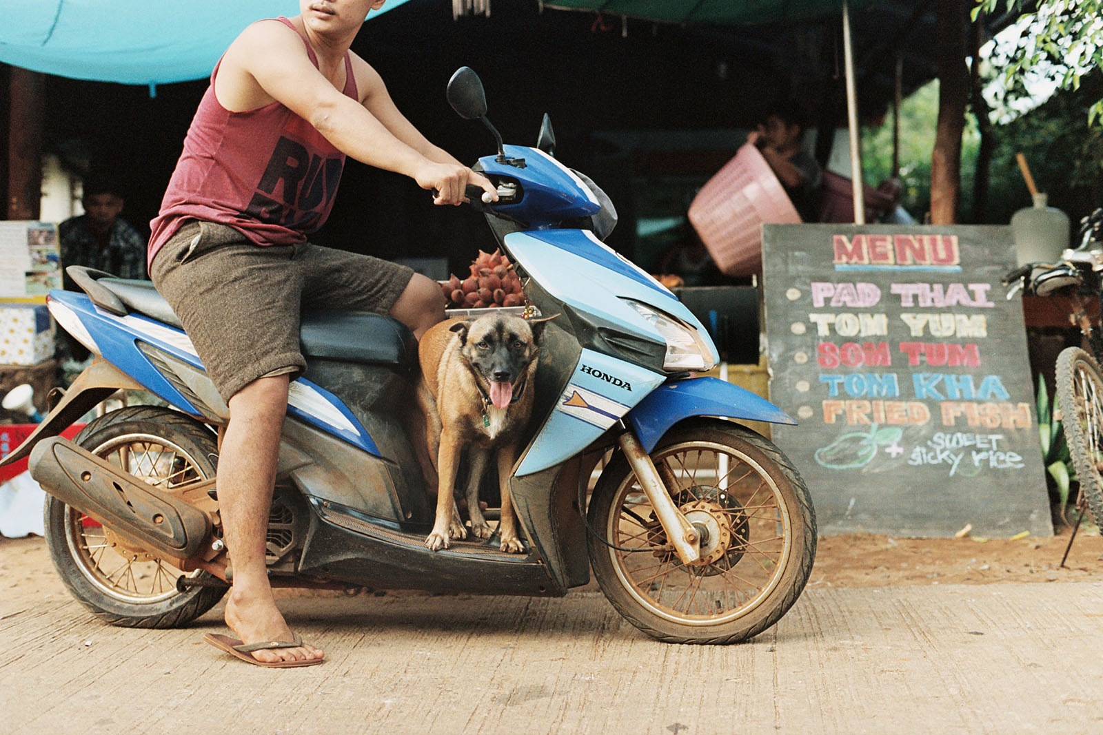 Delivery driver and his dog | Thailand Travel Photos