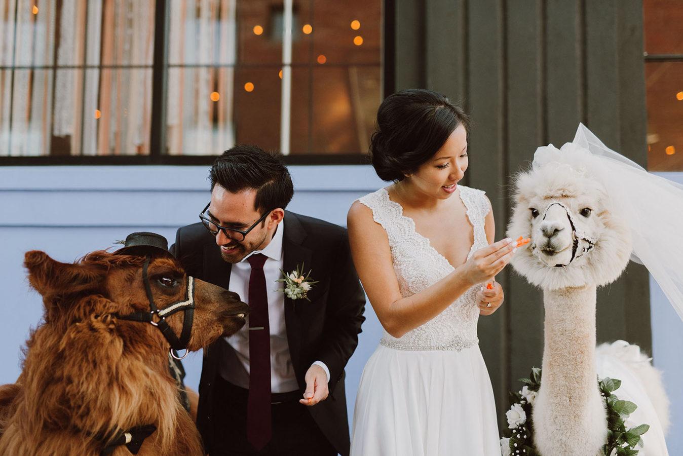 portland-castaway-wedding-kimsmithmiller-051