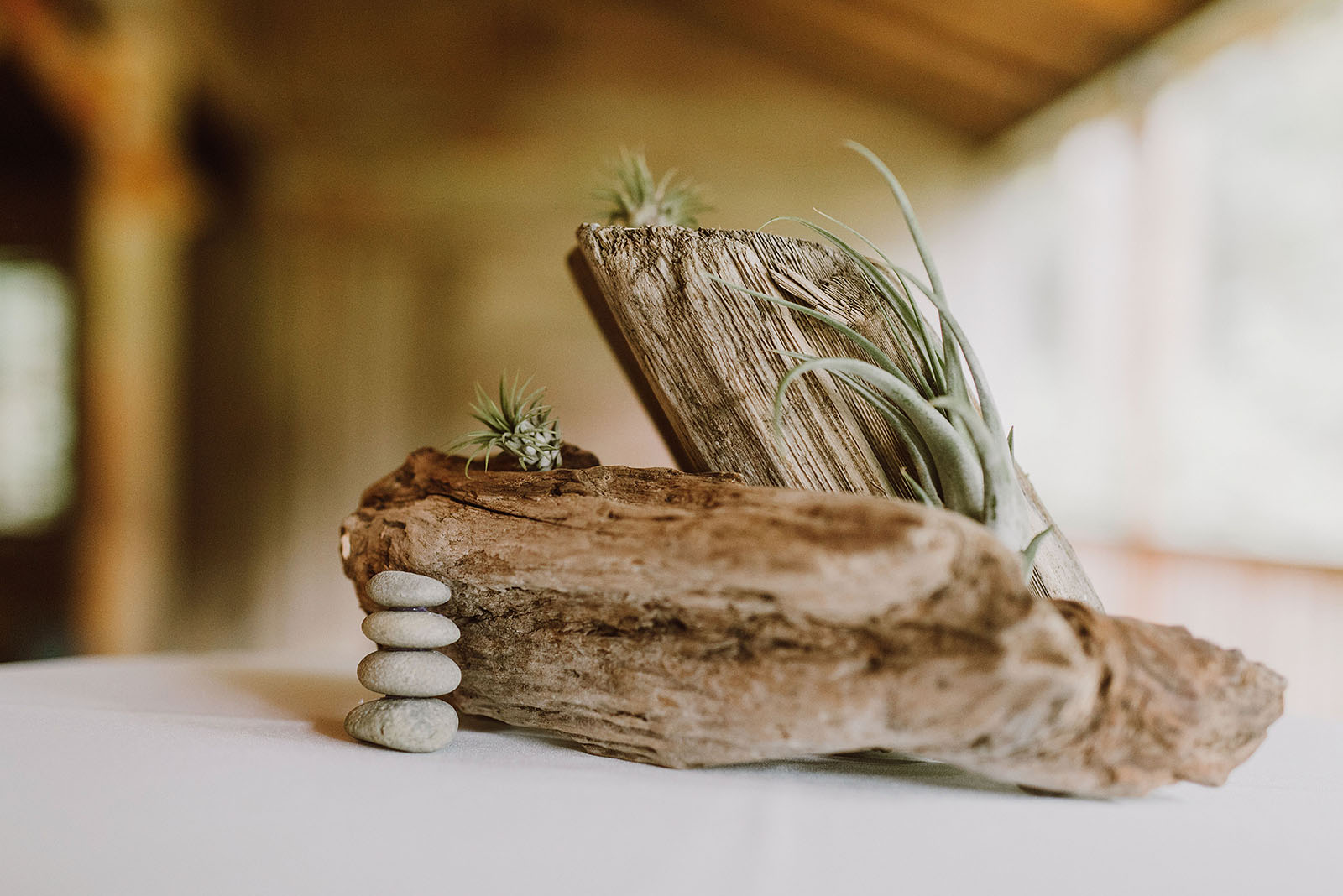 Airplants and driftwood centerpieces for a Camp Namanu wedding